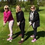Ladies Golf at abridge