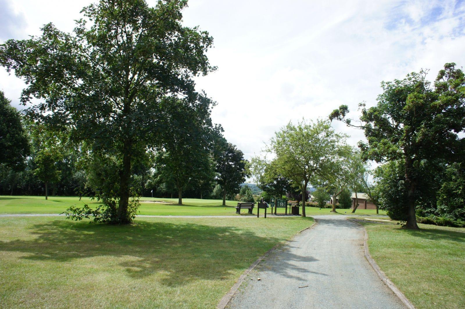 Buggy Path Abridge